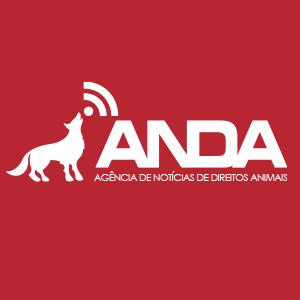 reportagem_anda